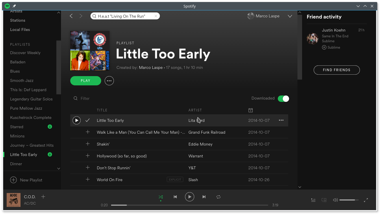 Ubuntu Linux Audioplayer Spotify
